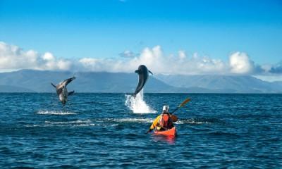 kayak-estrecho-magallanes-delfines-1000x600